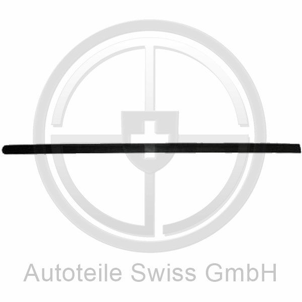 TÜRLEISTE VORNE LINKS , Peugeot, 307 Lim. / SW / Break 05-07